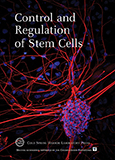 Control and Regulation of Stem Cells